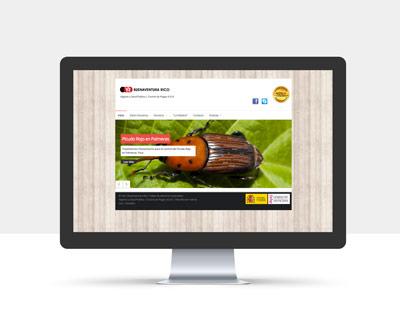 diseño página web buenaventura rico